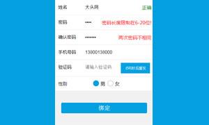 js手机端注册表单验证代码
